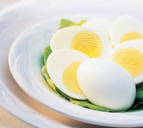 EggsInShell