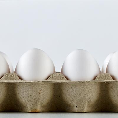 Egg Carton 1