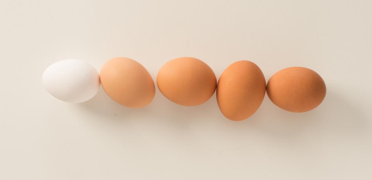 Eggs 101 Egg Nutrition Article middle copy CMS