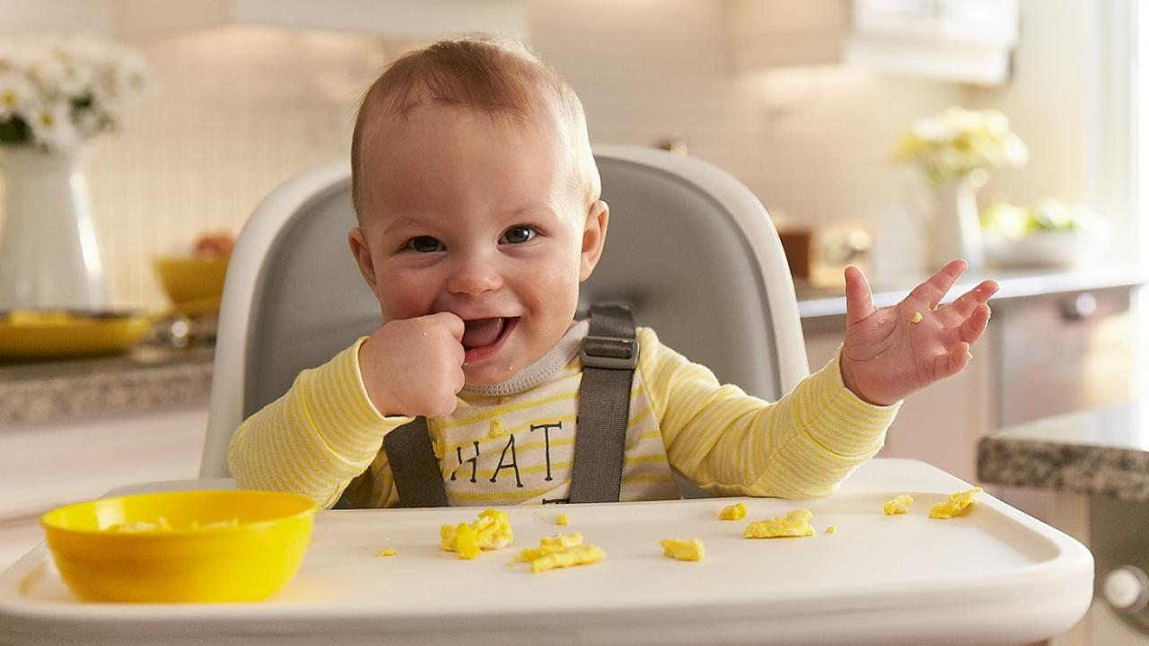 4 Delicious Whole Egg Recipes For Your Baby At 6 Months