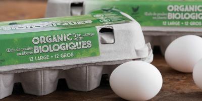 Organic egg cartons2